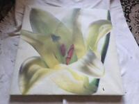 Canvas lily medium size £2
