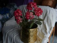 Brass planter and silk hydranger