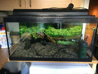 Fish Tank / Aquarium With Eiheim Filter & Accessories plus hood with light 70 Litre