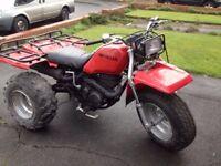 Honda 250ES Trike