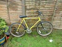 Peugeot Sahara mountain bike free delivery south Manchester