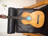 Guitar BM Clasico Spanish