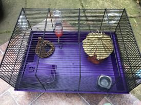 Purple wire hamster home