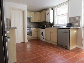***REALLY NICE 2 BEDROOMS FLAT IN STAMFORD HILL!!