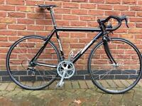 Surosa Road Bike - Custom Made