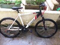 Apollo Teen Mountain Bike