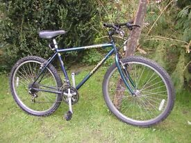 specialised rockhopper 19 in frame,runs well,tidy condition