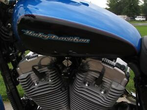 2004 harley-davidson XL883C Custom   Stage 1 Exhaust and Progres London Ontario image 20