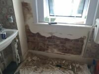 Damp Wall Repair/Proofing (10% off any quote)