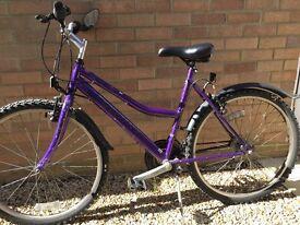 Probike Caprice ladies mountain bike