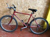 Men's Shogun Trail Breaker 2 Special Series Racing Bike