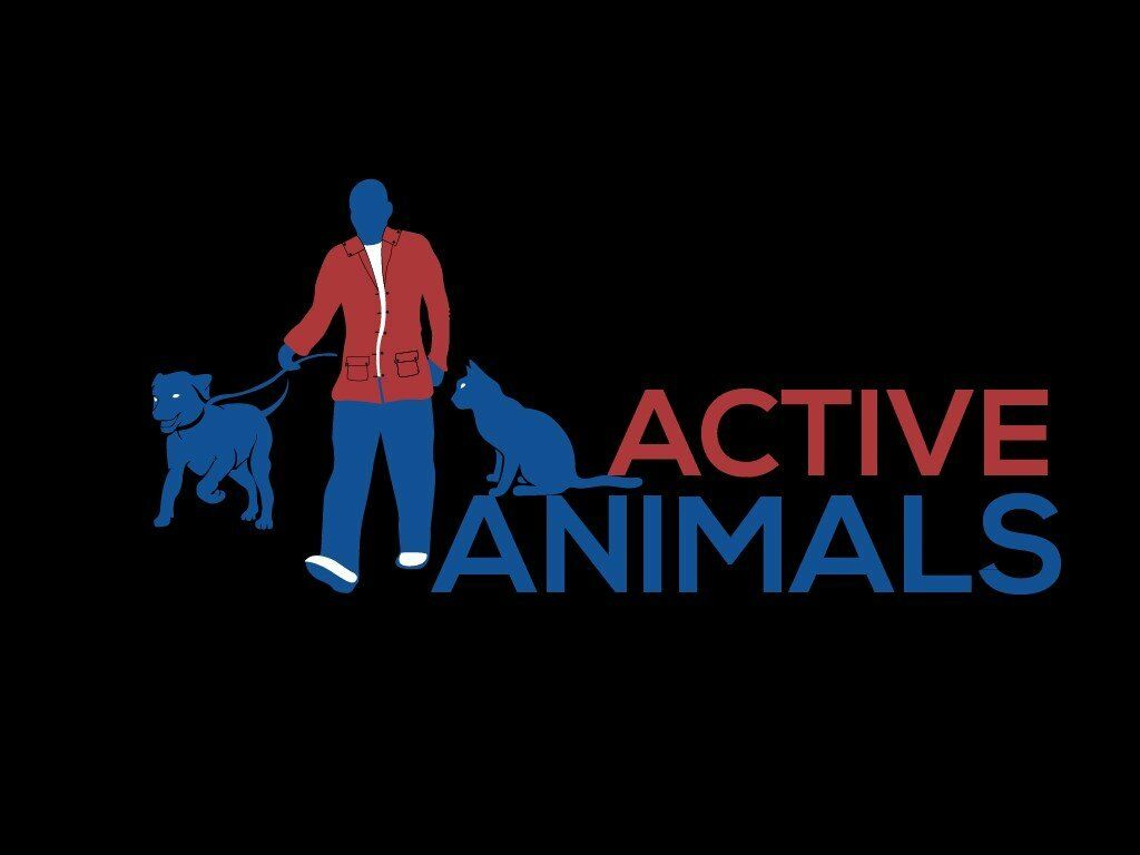 ACTIVE ANIMALS DOG WALKING & PET SITTING SERVICES | in Newcastle, Tyne and  Wear | Gumtree