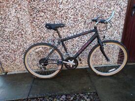 Alpina Kx-500 Kids Mountain bike Mountain bike
