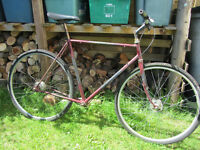 Single speed restoration project