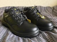 Safety Shoes Dunlop Brand New