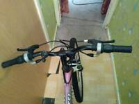 Cheap pink bike for sale