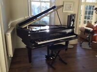BEGINNER PIANOS - BLACK HIGH GLOSS BABY GRAND PIANO