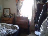 SHORT TERM - 2 months in cool balham house with great garden!
