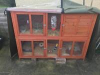 Double storey rabbit/Guinea pig hutch
