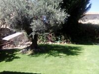 Well-appointed Spanish house situated near Segovia for those wanting sunshine, walking and good food