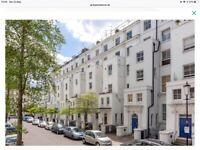 Notting Hill garden flat