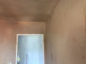 Local plasterer with CSCS card