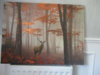 LARGE canvas stag picture.AS new.