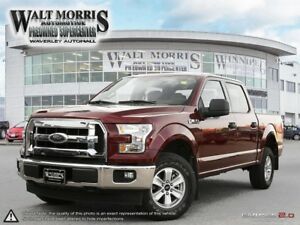 2017 Ford F-150 XLT: ONE OWNER, ACCIDENT FREE PRAIRIE VEHICLE!