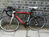 Willier carbon road bike