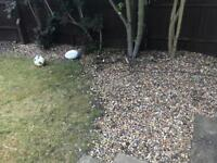 Stones/Pebbles - Free if you can collect!