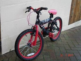 Huffy bike for the youngsters of the family.