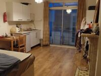 Streatham Hill - enormous newly decorated studio/bedsit with conservatory and garden.