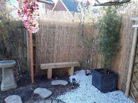 Rustic pine wooden outdoor bench