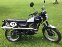 LIMITED EDITION Sinnis Scrambler 125cc For Sale - LIKE NEW