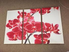 Set of 3 red and white pretty flower canvass in near perfect Condition. Collect From Ramsgate.