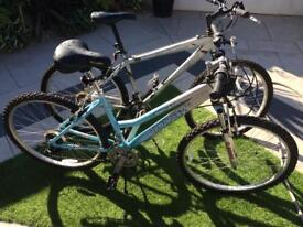 2 mountain bikes forsale , in excellent condition