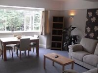 Modern Double Bedroom - Female Flat Share - Walking Distance to Bournemouth Centre - 2 Bathrooms