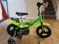 Tmnt bike with stabilizers