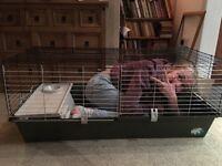 Rabbit/guinea pig cage- virtually brand new.
