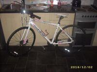 Boardman Comp Disc Female Pink & White Girls Ladies Hybrid Triathlon Bike 45cm 24 Spd Excellent