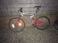 Full suspension viking bike