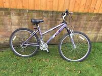 Small lady's bike