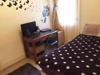 Room in clean quiet houseshare with 2 cute Cats. All Bills included. Suit Female. 26 March