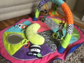 Baby travel playmat/ playgym