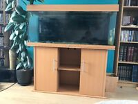 Jewel Rio 240 Aquarium with 2 Eheim Filters