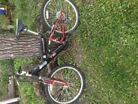 Lightly used bikes
