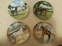 Spode Horse Plate Collection By Susie Whitcombe