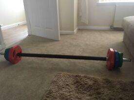 Bodymax 20kg coloured weights bar