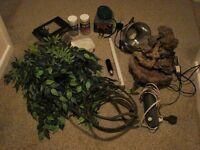 Terrarium/vivarium/reptile accessories: heat/moon/UV light, water feature, branches, plants etc.