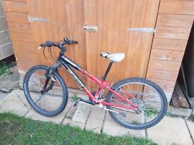 Teenagers Specialized Mountain Bicycle